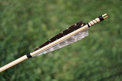 Закон, разрешающий охоту с луком и арбалетом, вступил в силу в России...
